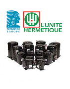 TECUMSEH - L'UNITE' HERMETIQUE